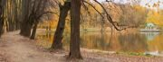 парк битцевский лес